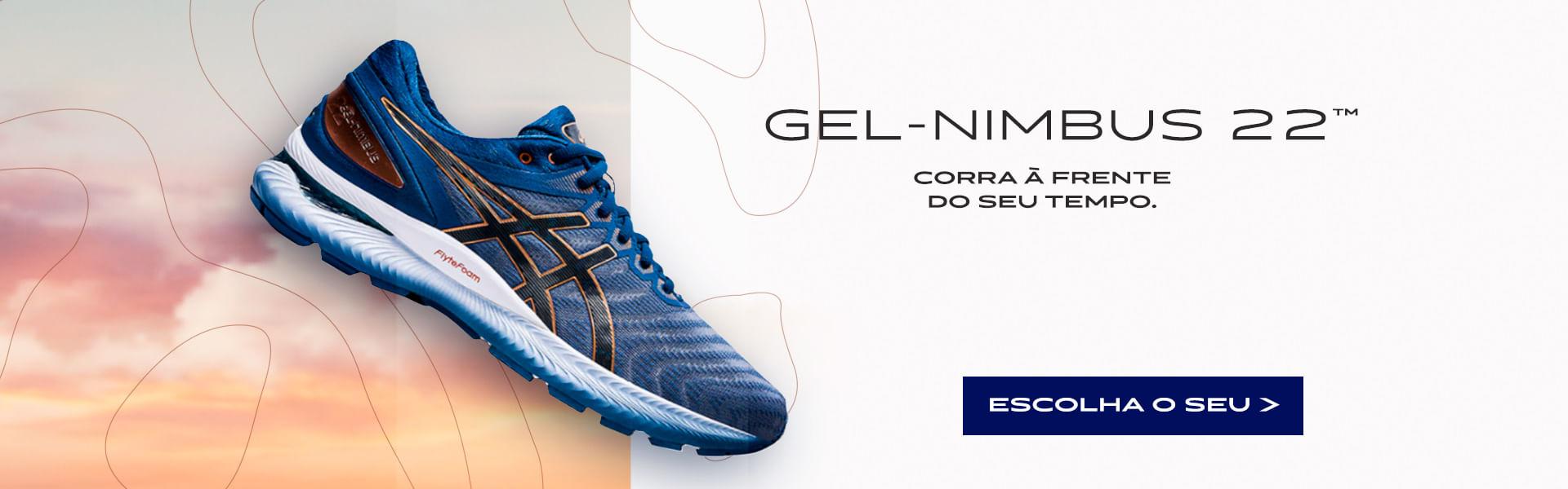 Campanha GEL-Nimbus 22